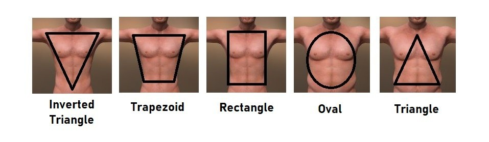 Men's Body Shape Chart